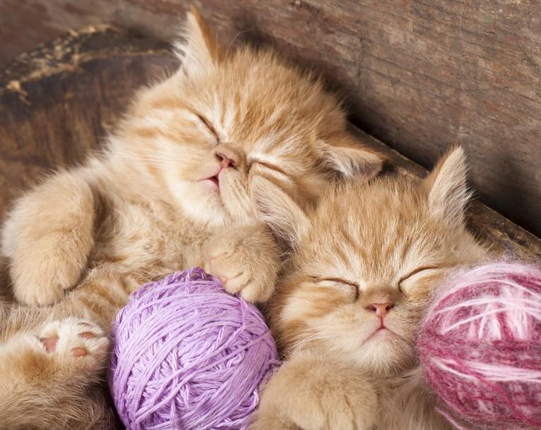 Ручное вязание на спицах