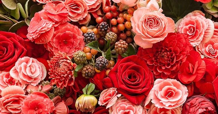 Где лучше недорого заказать цветы