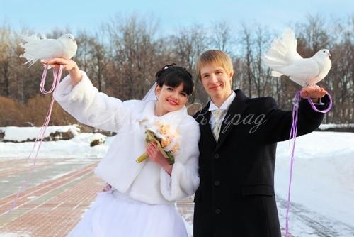 Белые шубы невестам